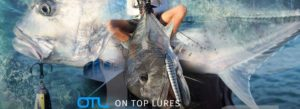 On top lures fishing